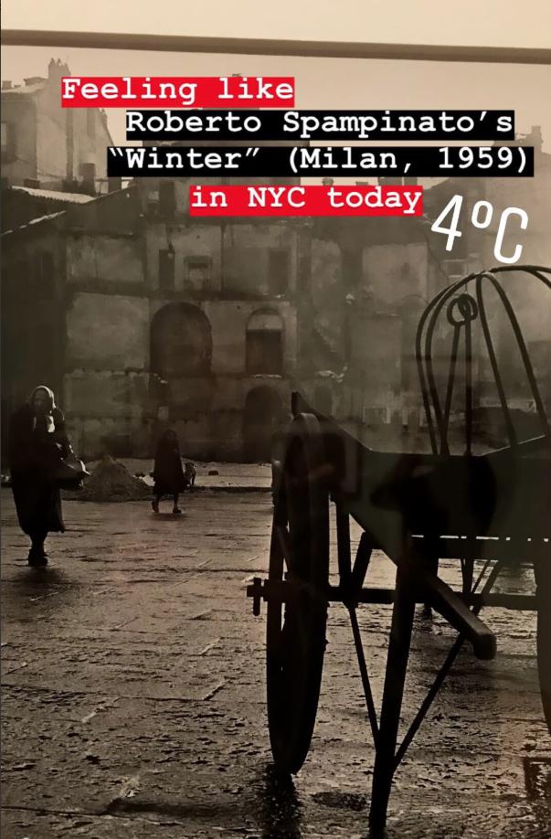 Screen Shot 2018-12-15 at 1.37.24 PM